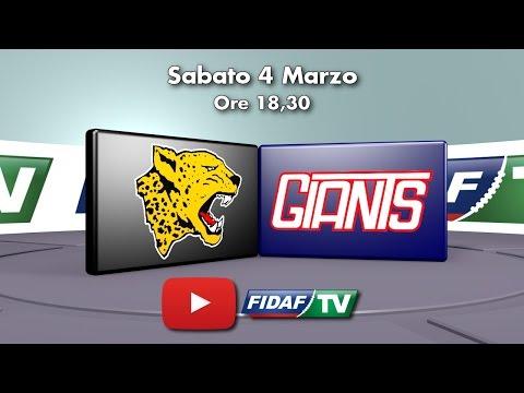Giaguari Torino vs Giants Bolzano