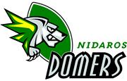 Logo Domers