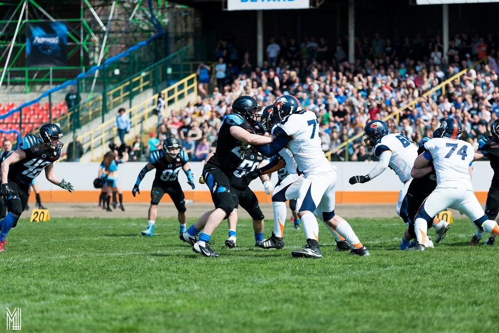 Wroclaw Panthers vs Warsaw Eagles Foto - Maciek Lulko